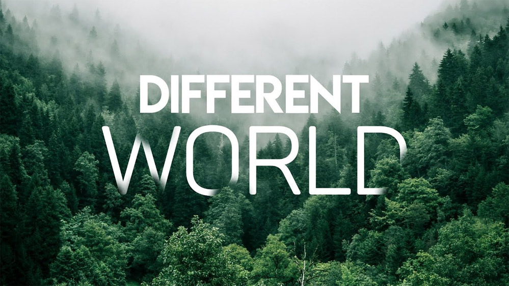 Alan Walker: Different World - перевод